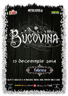 Concert Bucovina in Club Fabrica