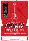 Concert CELELALTE CUVINTE si CONEXIUNI, in sprijinul Campaniei Oamenii Timpului, la Arenele Romane