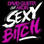 David Guetta Sexy Bitch