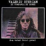 Valeriu Sterian S-a votat Codul penal