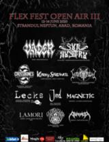 Flex Fest Ediia 3