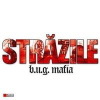 B.U.G. Mafia - Strazile - maxi-single