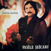 Vasile Seicaru - Iubirea noastra