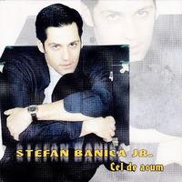 Stefan Banica Jr. - Cel de acum