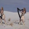 """Asculta """"Enter Sandman"""" reinterpretata la harpa (video)"""