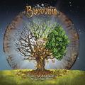 Bucovina - Saizeci de Anotimpuri de Folc Hevi Blec (Album MP3)