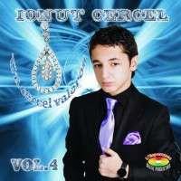 Ionut Cercel - Un cercel valoros
