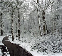 Ce piesa te reprezinta cand ninge?