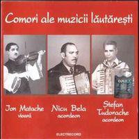 VariousArtists - Comori ale muzicii lautaresti
