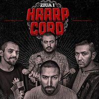 Haarp Cord - Ziua 1
