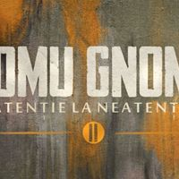 Download Omu Gnom - Atentie la neatentie II (album)